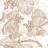Hand drawn autumn berries seamess pattern Royalty Free Stock Image