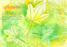 Hand drawn autumn leaves Stock Photography