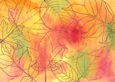 Hand drawn autumn leaves Royalty Free Stock Images
