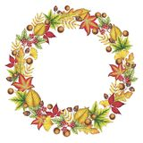 Hand Drawn Autumn Leaves Wreath royalty free stock images