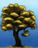 Hand drawn autumn tree Royalty Free Stock Images