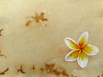 Hand-drawn background Stock Image