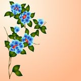 Hand drawn background with a fantasy flower Stock Photography