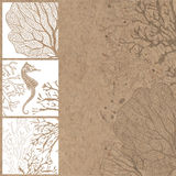 Hand-drawn  background with marine plants and seahorses wi Royalty Free Stock Image