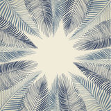 Hand drawn background of palm leaves Stock Images