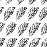 Hand drawn background with sushi. Vector seamless pattern. Vintage style. Linear graphic design. Black and white Japanese rolls. Vector illustration Stock Photos