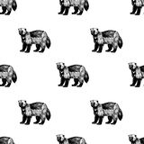 Hand drawn background with wolverine. Vector seamless pattern. Royalty Free Stock Images