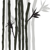 Hand-drawn bamboo background with space for text Royalty Free Stock Photos