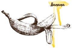 Hand drawn banana Royalty Free Stock Image