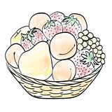 Hand drawn basket with fruits. Hand drawn fruit basket with strawberries, peaches, apricots, pears, apples, grapes. Stylized watercolor Royalty Free Stock Images
