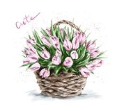 Hand drawn beautiful pink flowers in basket. Cute tulips. royalty free stock images