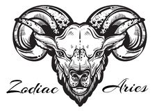 Hand-drawn beautiful artwork of a ram. High-detailed linear style art. Aries, zodiac sign. Trendy vector illustration isolated. stock illustration