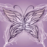 Hand drawn beautiful butterfly Stock Photos