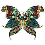 Hand drawn beautiful butterfly. Stock Images