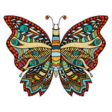 Hand drawn beautiful butterfly. Royalty Free Stock Photo