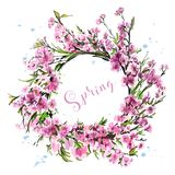Hand drawn beautiful flower wreath. Cute spring cherry blossoms. Stylish sakura wreath. Sketch. Vector illustration Royalty Free Stock Photos