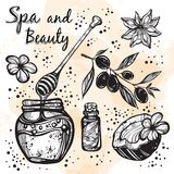 Hand-drawn beautiful spa icons in linear style. Spa vector collection. High-detailed graphic realistic elements . vector illustration