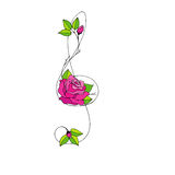 Hand drawn beautiful Treble clef with rose. Vector illustration Royalty Free Stock Images