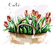 Hand drawn beautiful tulips bouquet. Cute flowers. Sketch. Fashion set. Royalty Free Stock Photography