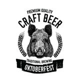 Hand drawn beer emblem with wild hog, boar, pig Template for badge, logo, menu cover, patch Royalty Free Stock Image