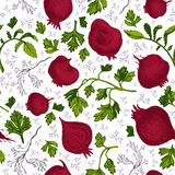 Hand drawn beetroot vector pattern Royalty Free Stock Image