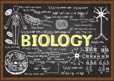 Hand drawn biology on chalkboard. Stock Photography