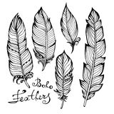 Hand drawn bird black feathers closeup  on Royalty Free Stock Photography
