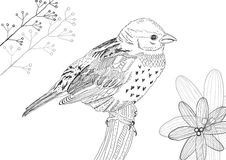 Hand drawn bird. Hand drawn black bird with flowers Stock Images