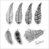 Hand drawn bird feathers. Boho style. Hand drawn bird feathers closeup isolated on white background set. Boho style. Vector illustration. Eps10 vector illustration