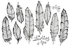 Hand drawn bird feathers  closeup big set isolated Royalty Free Stock Photography