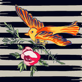 Hand drawn bird flying with flower roses tropical vintage print,. Stripes pattern retro background vector illustration for design, fashion, shirt, textile Royalty Free Stock Images