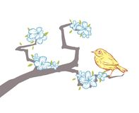 Hand drawn bird on sakura Royalty Free Stock Image