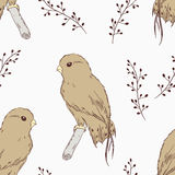 Hand drawn bird seamless pattern Stock Photos