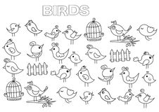 Hand drawn birds set. Coloring book page template. Stock Image