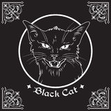 Hand drawn black cat head in frame over black background and ornate gothic design elements. Wiccan familiar spirit, pagan witchcra Royalty Free Stock Image