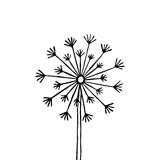 Hand drawn black silhouette dandelion on a white background Stock Images