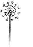 Hand drawn black silhouette dandelion on a white background. Hand drawn black silhouette dandelion on a white background Royalty Free Stock Photography