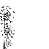 Hand drawn black silhouette three dandelion on a white backgroun Stock Photography