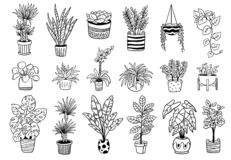 Set of cute Indoor and outdoor plants in pots. royalty free illustration