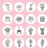 Lovely icons of plants in pots. stock illustration