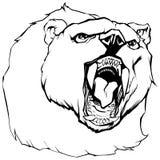 Bear Head Illustration Stock Images