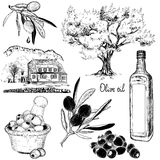 Hand-drawn black and white set of olive products Stock Images