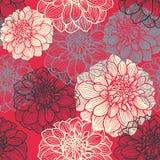 Hand-drawn bloemen van dahlia Stock Afbeeldingen