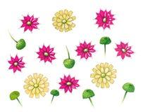 Hand-drawn bloemenpatroon Stock Afbeelding