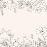 Hand-drawn bloemkader Royalty-vrije Stock Afbeeldingen