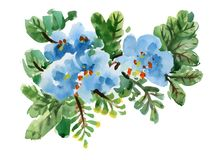 Hand drawn blue flowers isolated on white background.  Royalty Free Stock Photo