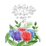 Hand-drawn boeket van tulpen Waterverfsamenstelling vector illustratie