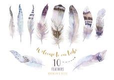 Hand drawn bohemian watercolor paintings vibrant feather set. Bo stock illustration