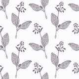 Hand drawn borage branch outline seamless pattern Royalty Free Stock Image