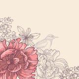 Hand drawn botanical theme card Royalty Free Stock Photos